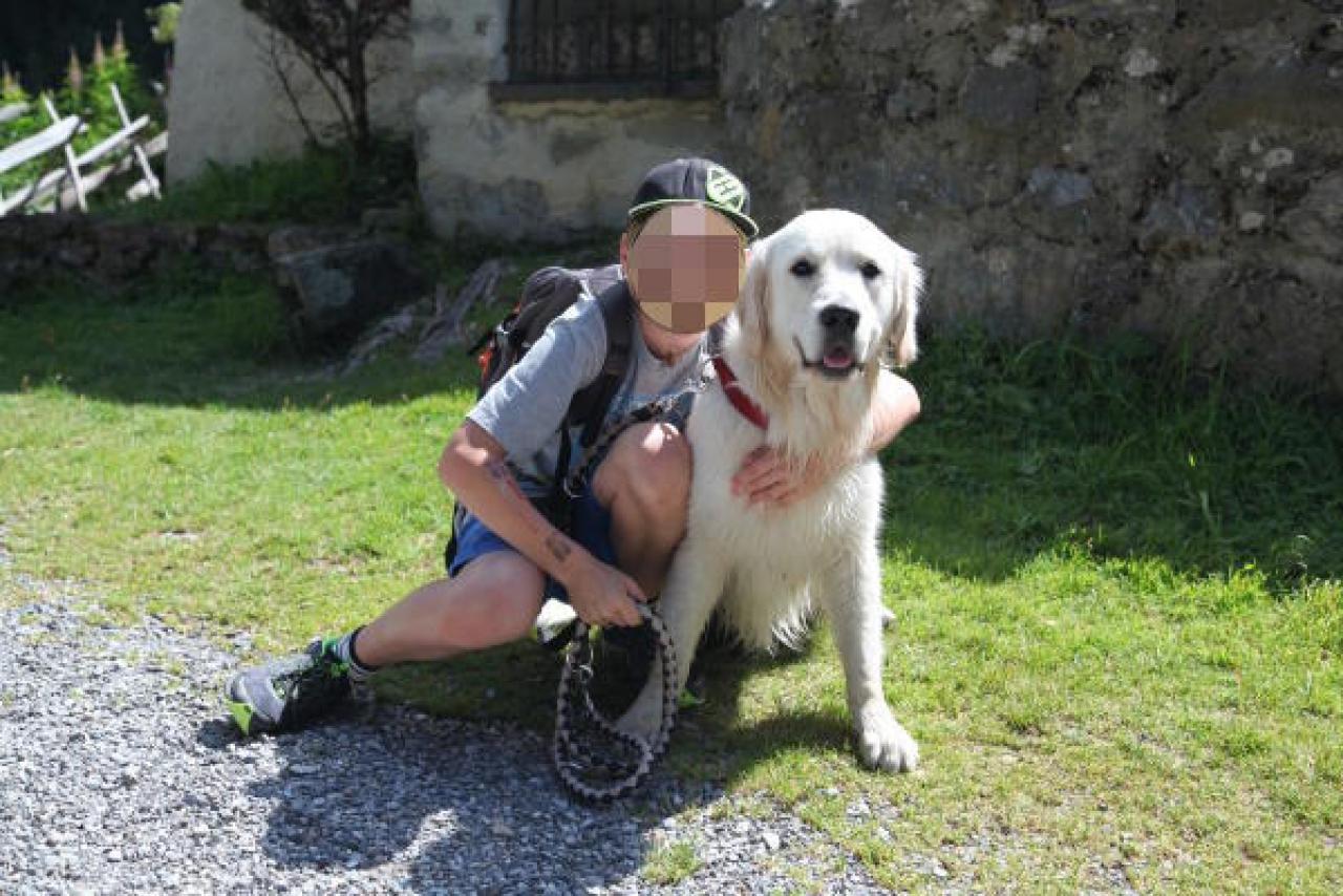 Ticinonline - «Senza frenare, ha investito il mio cane»