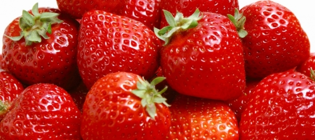 Ticinonline fragole quando e come coltivarle for Piantare le fragole
