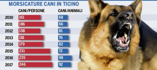 Cani Che Mordono Luomo Casi In Aumento Ma Ticinonline
