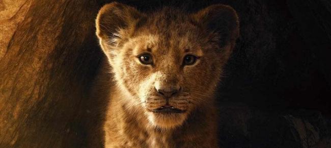 Pin by katia vittoria on disney il re leone film completi