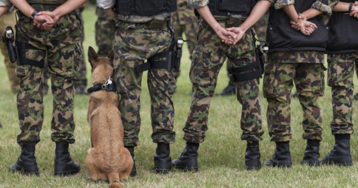 Ci regole di incontri militari